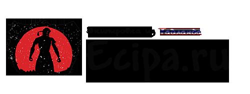 Интернет-магазин экипировки Ecipa.ru